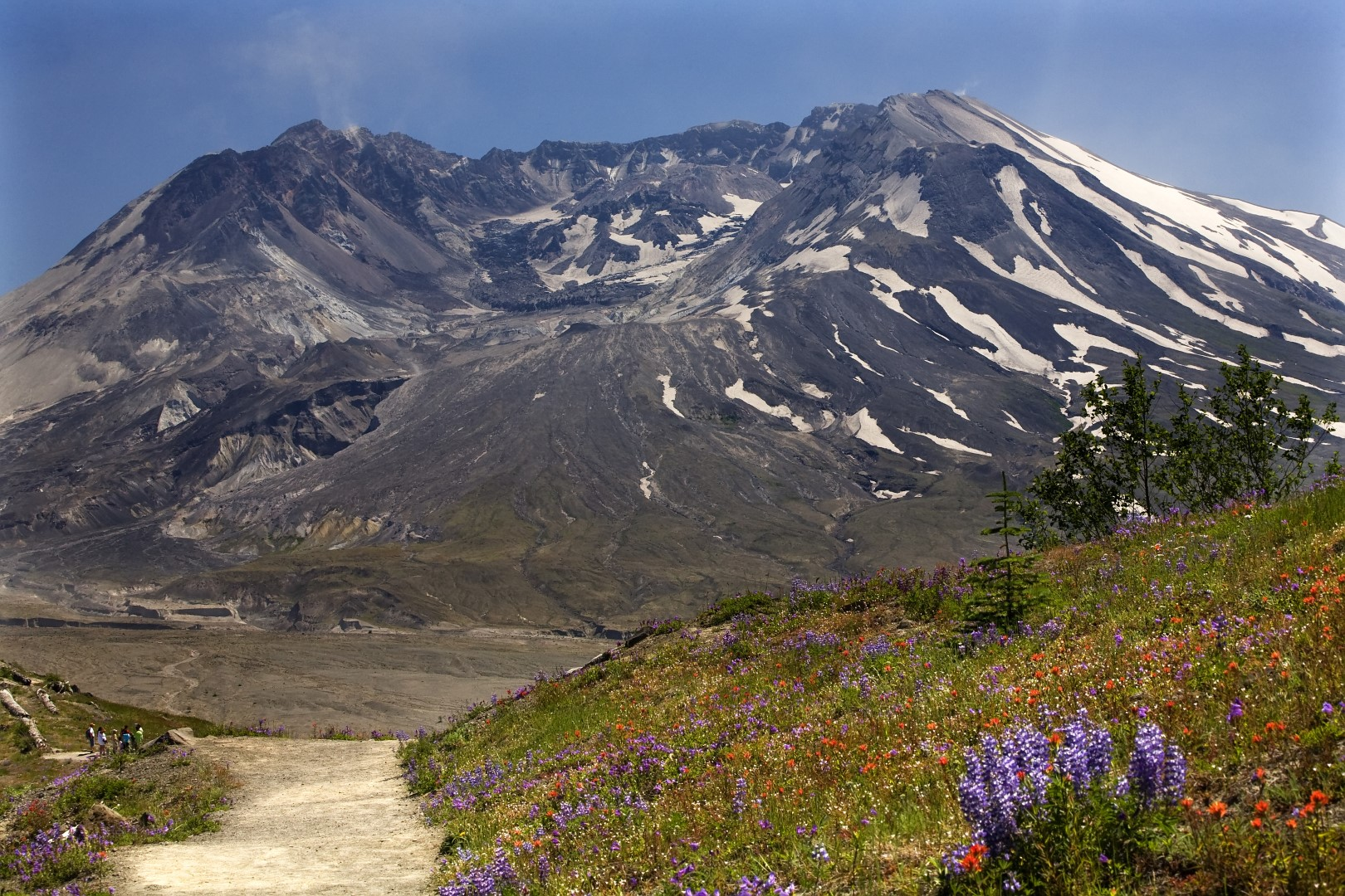 Mt St Helens Washington Map.Mount Saint Helens National Volcanic Monument Topo Map Skamania