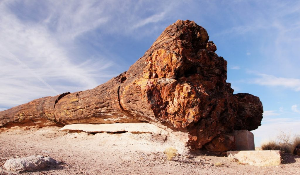 petrified forest national park map pdf
